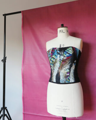 Feathers Corset Top - Front
